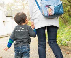 妊娠中に2歳の息子をスーパーに連れて行くのは苦痛!オイシックス体験談